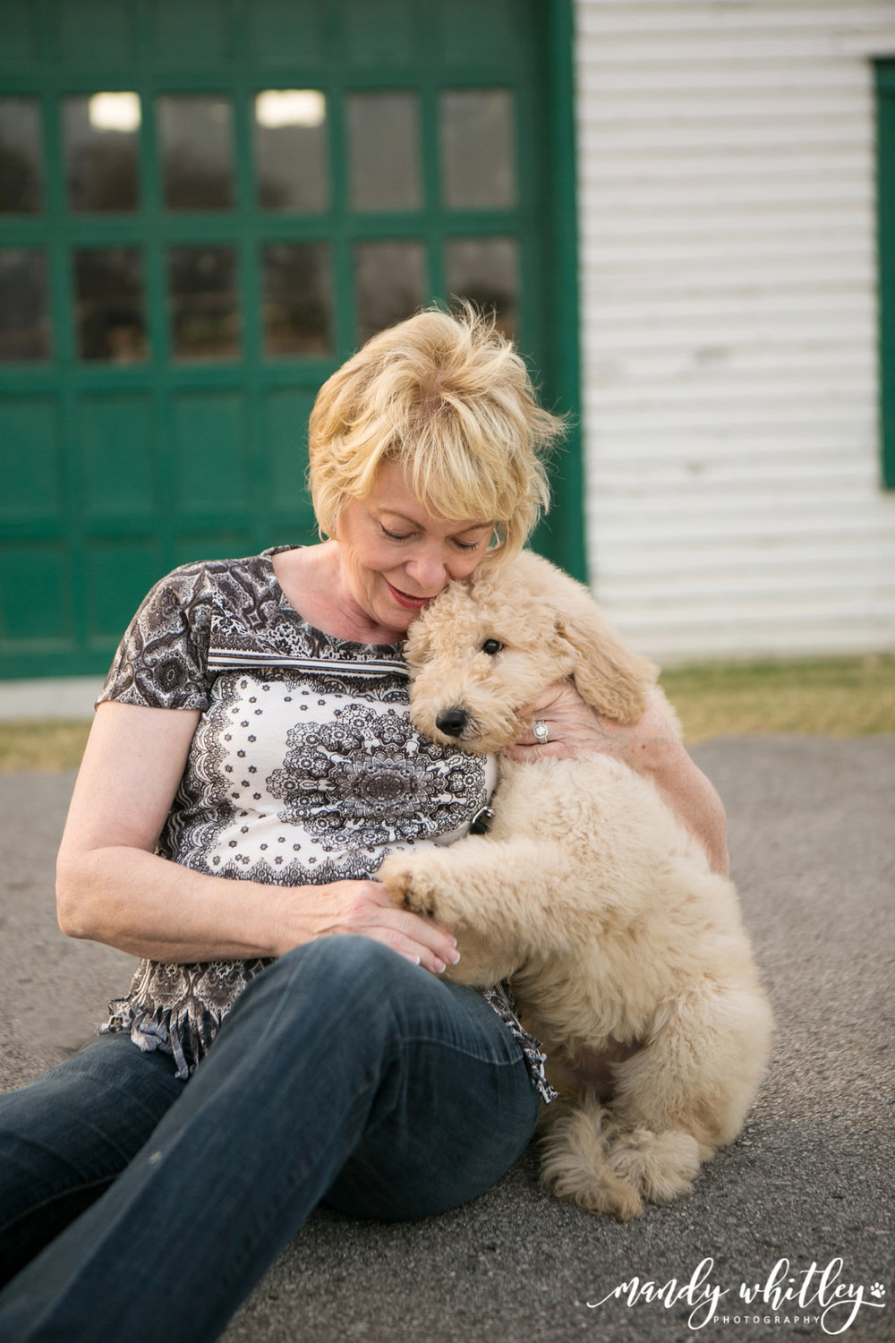 Nashville Dog Photographer Goldendoodle at Harlinsdale Farm