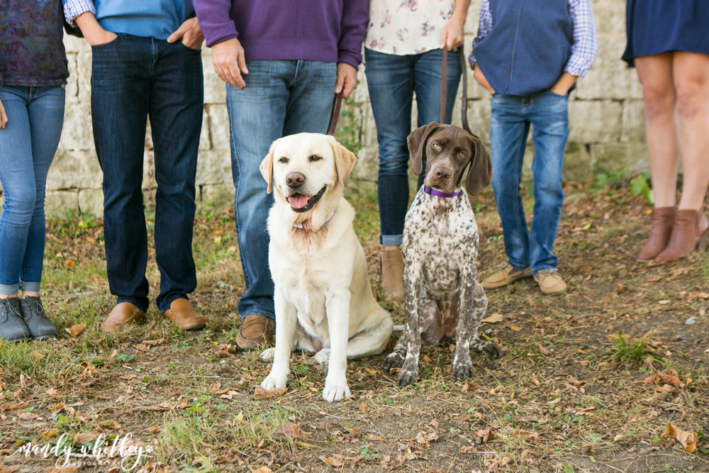 Smith Farm Nashville Dog Family Session