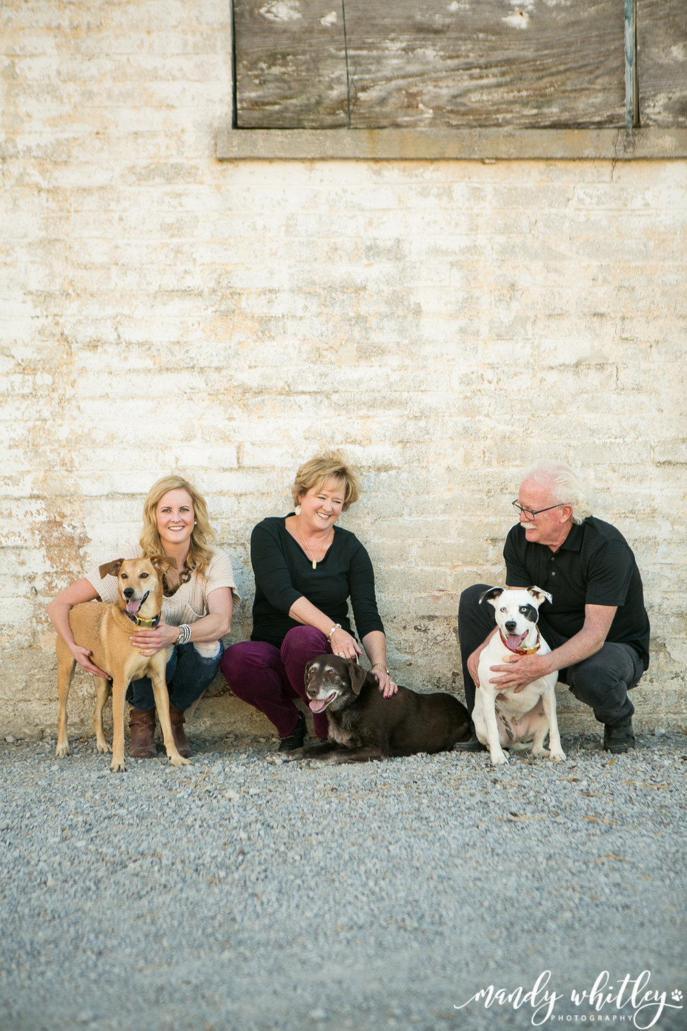 Dog Photographer in Nashville Mandy Whitley
