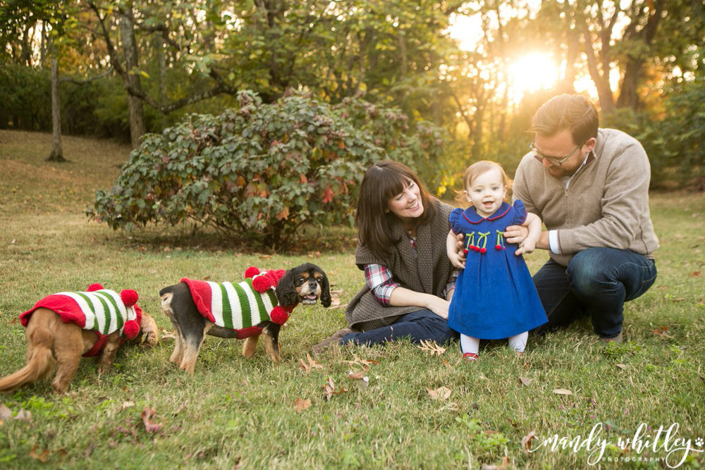 Nashville Family Photographer Christmas Pet Session