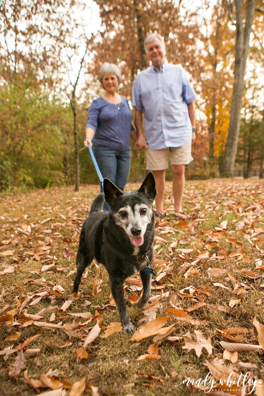 Nashville Pet and Family Photographer