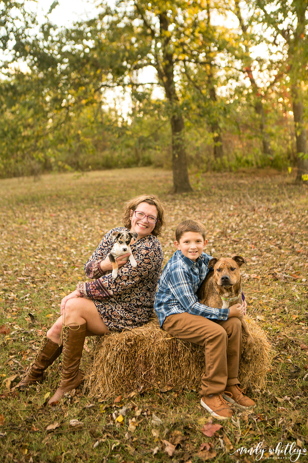 Pet Photographer Dog Photographer in Nashville