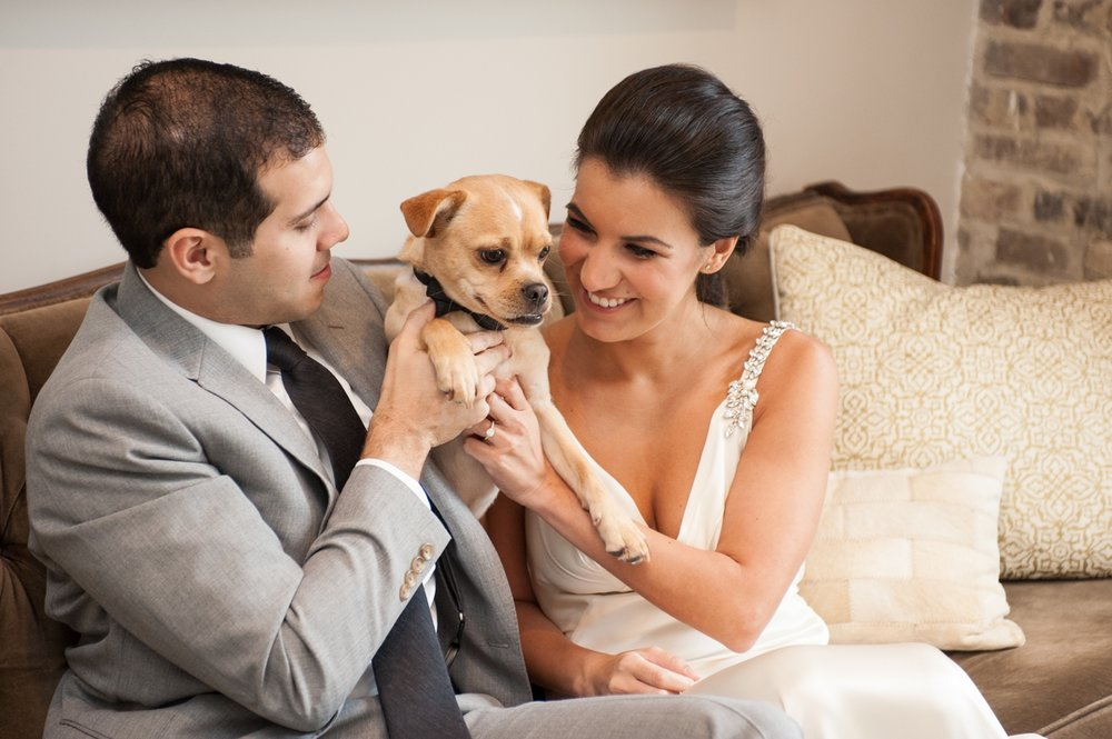 Nashville Wedding Photographer with Dogs