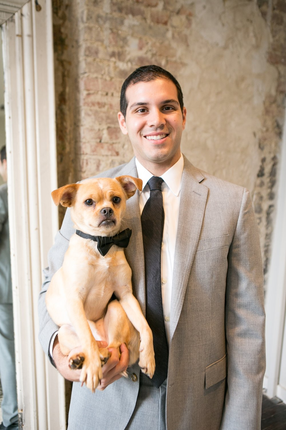 Pet and Wedding Photographer Nashville