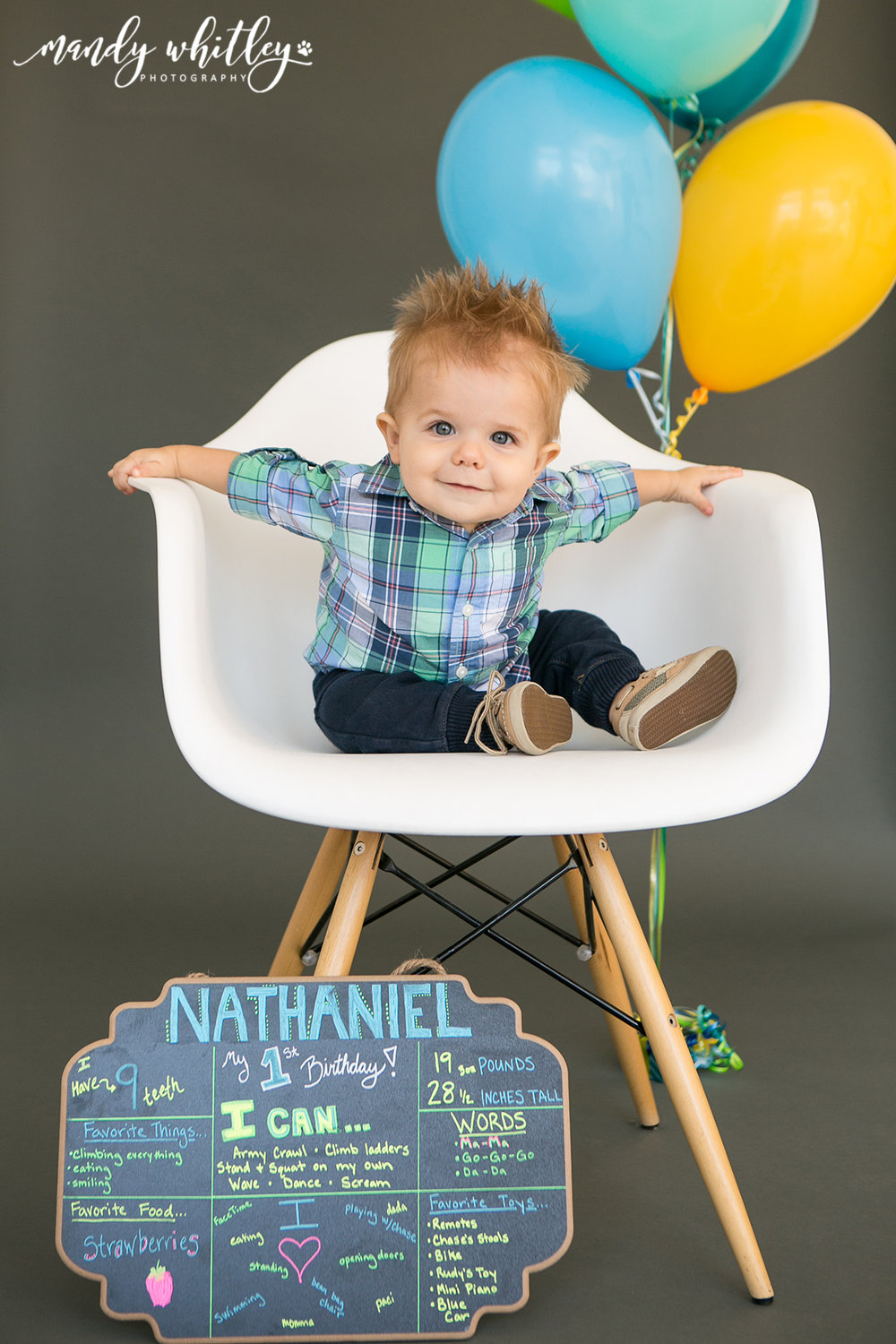Nashville Family Photographer 1st Birthday