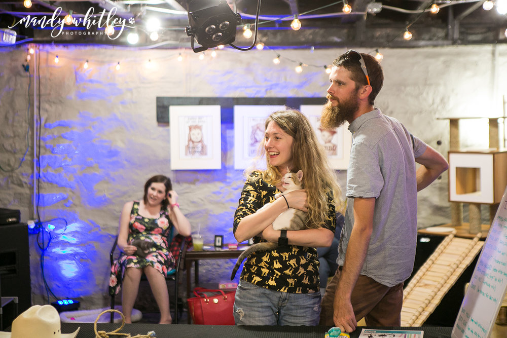 Mewsic Kitty Cafe Pop Up Nashville