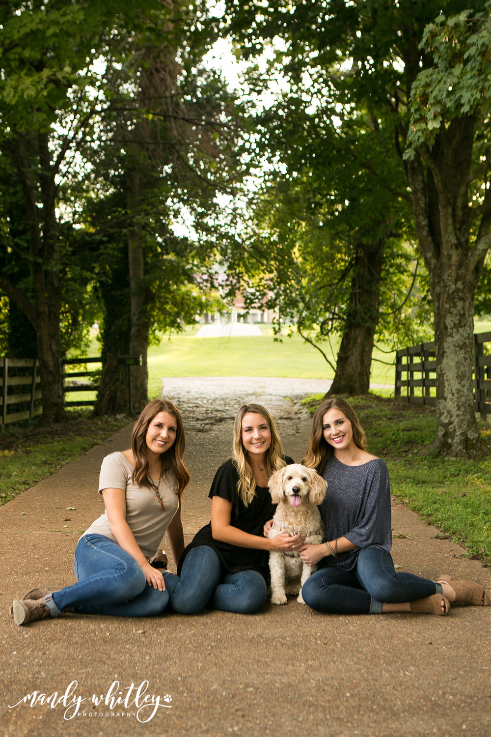 Pet Photographer in Tennessee