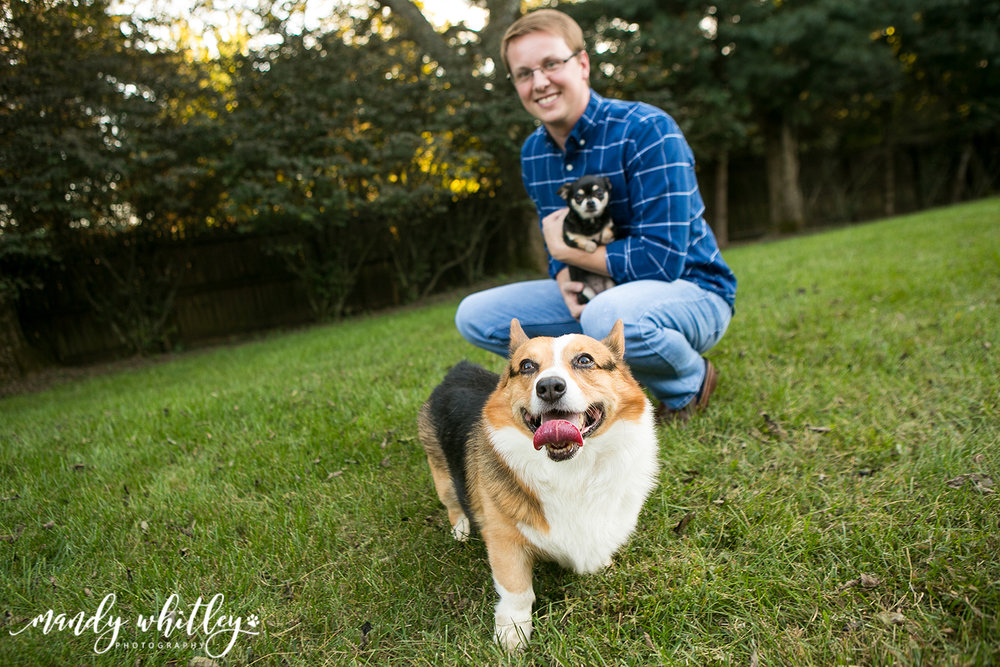 Dog Photographer in Nashville Tennessee
