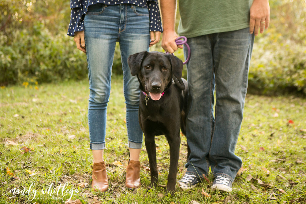Family Photographer Tennessee