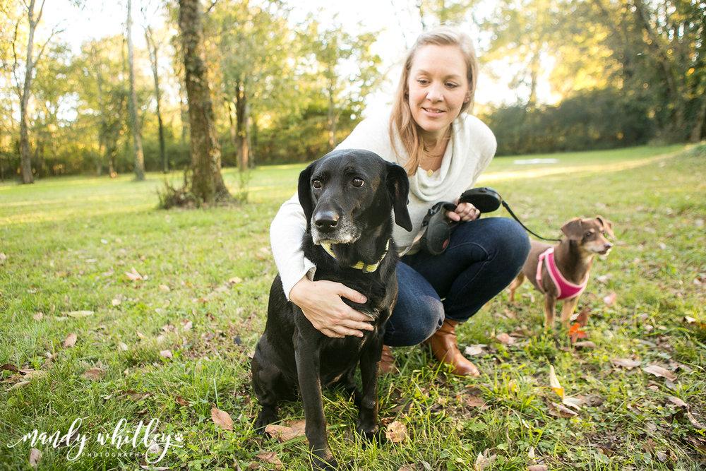 Best Dog Photographer in Nashville Tennessee