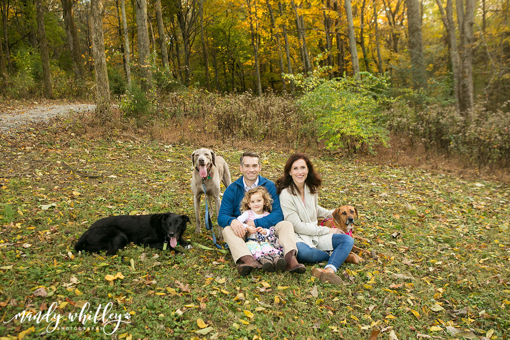 Family Photos with Dogs and Pets