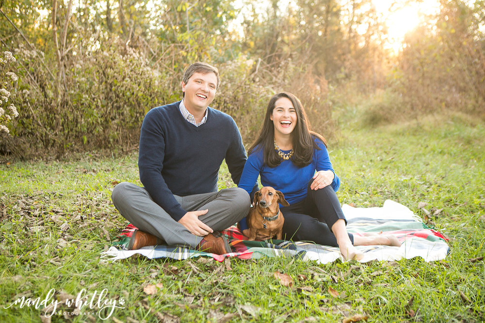 Nashville Pet Photographer Mandy Whitley