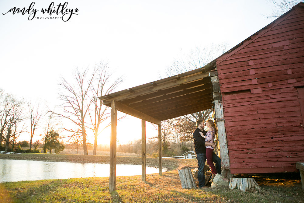 Engagement Portrait Photographer in Tennessee