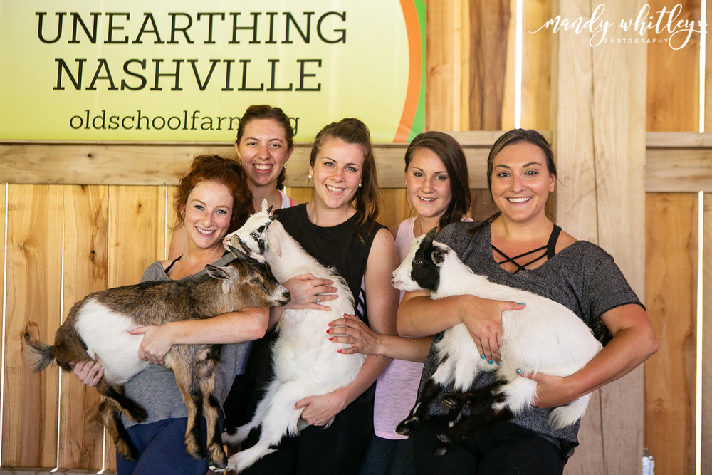 Animal pet photographer in tennessee