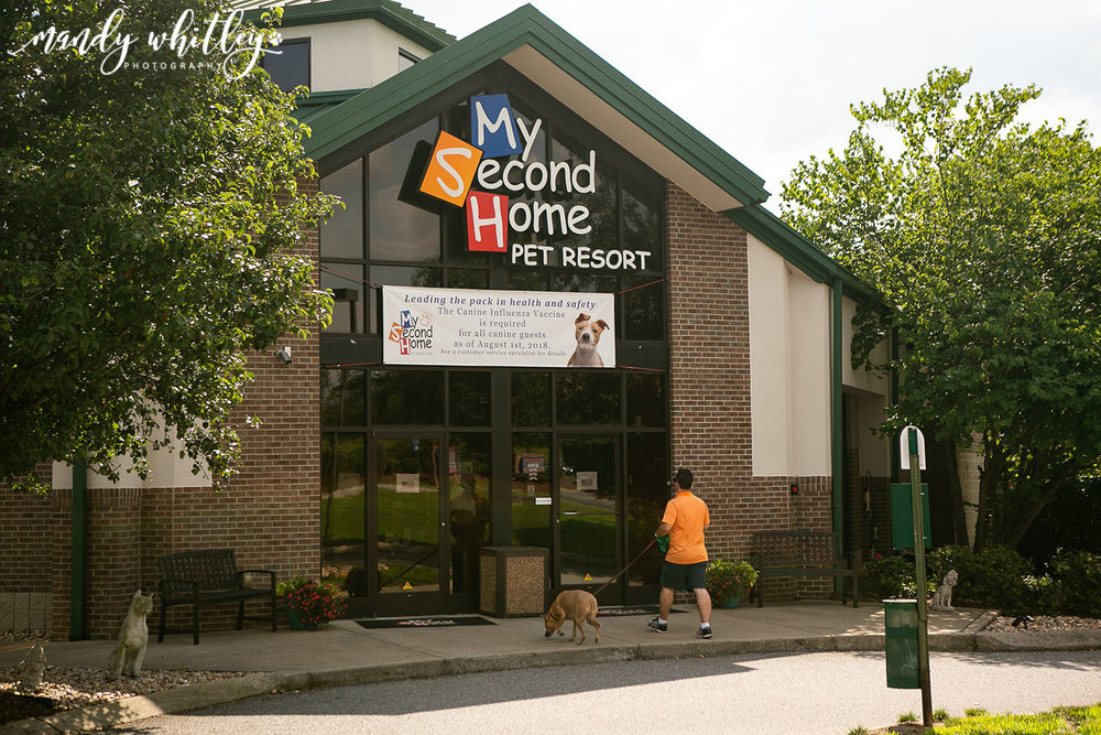 My Second Home Pet Resort Nashville TN