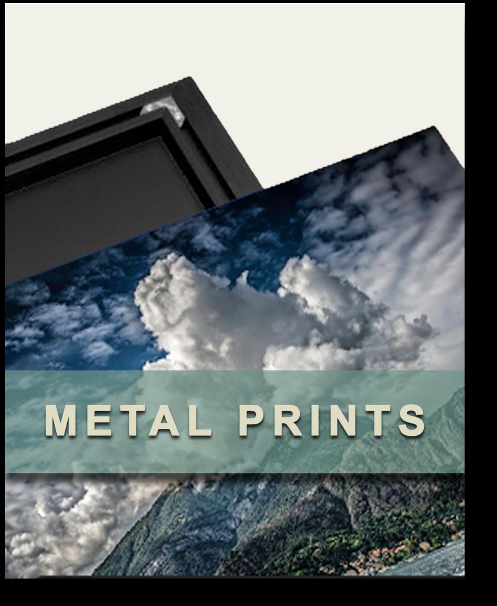 MetalPrints.png