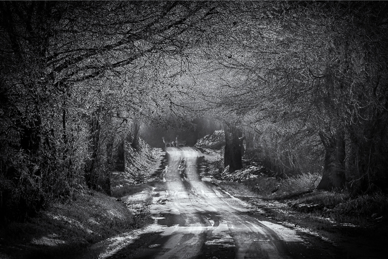 Icy Byway