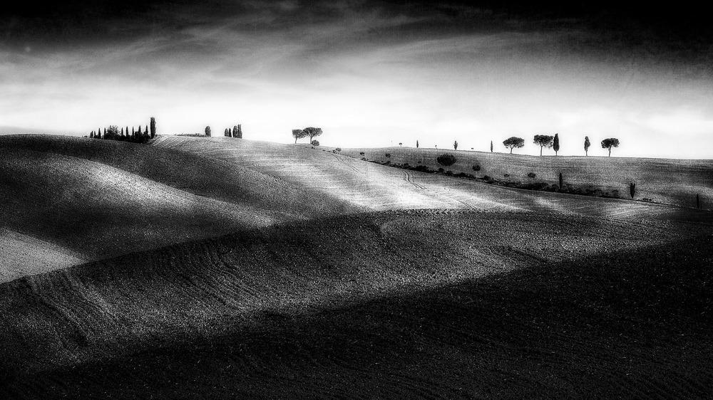 'Awaiting Rain'  , Val d'Orcia, Italy, 2014