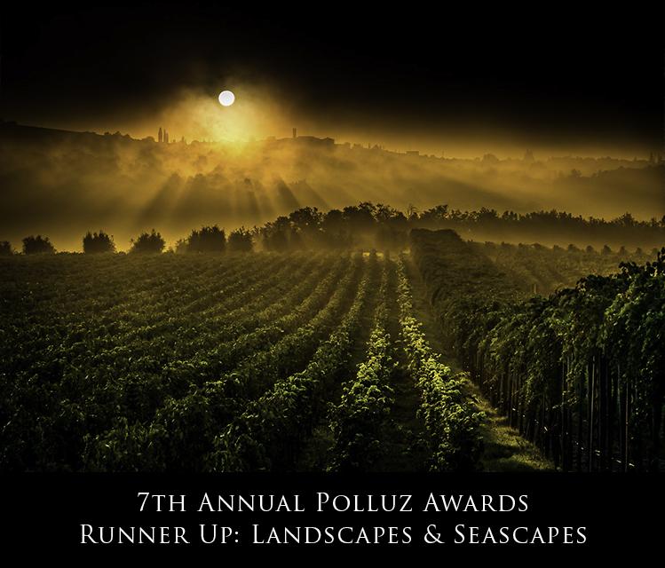 2015-PolluxRunnerUpLandscapes.jpg