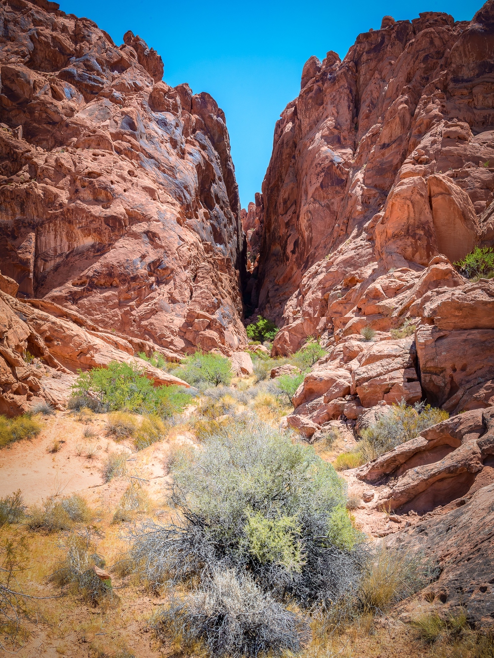 ValleyOfFire-002.jpg