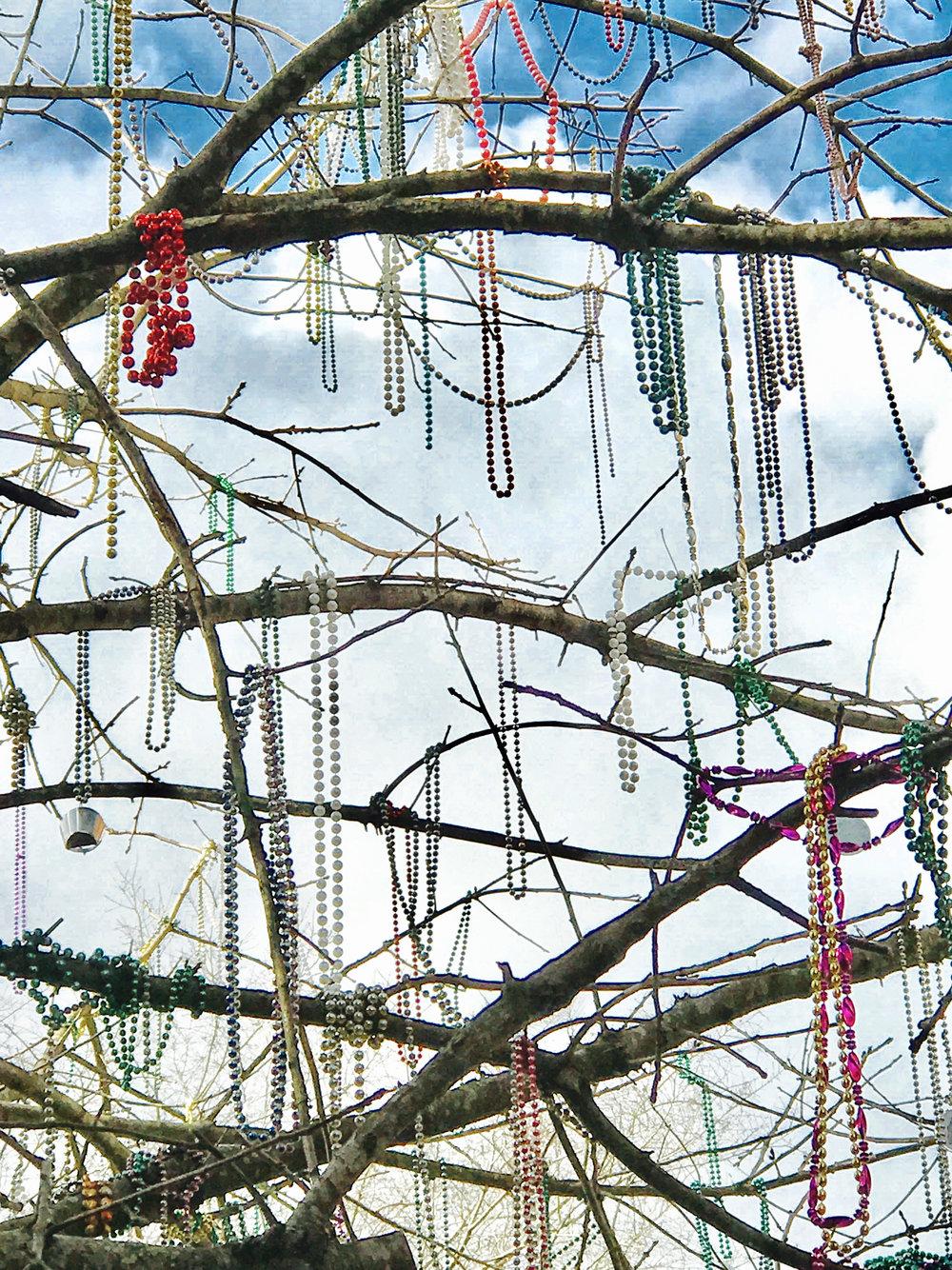 Jackson Square Area -- Mardi Gras Beads