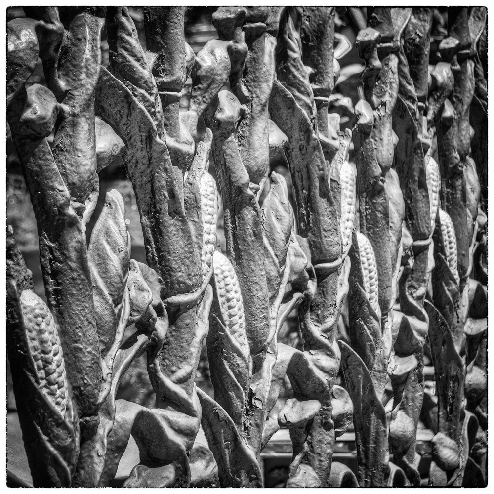 The Famous Cornstalk Fence