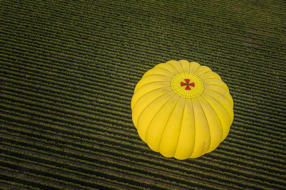 NAPA-Baloon-22.jpg