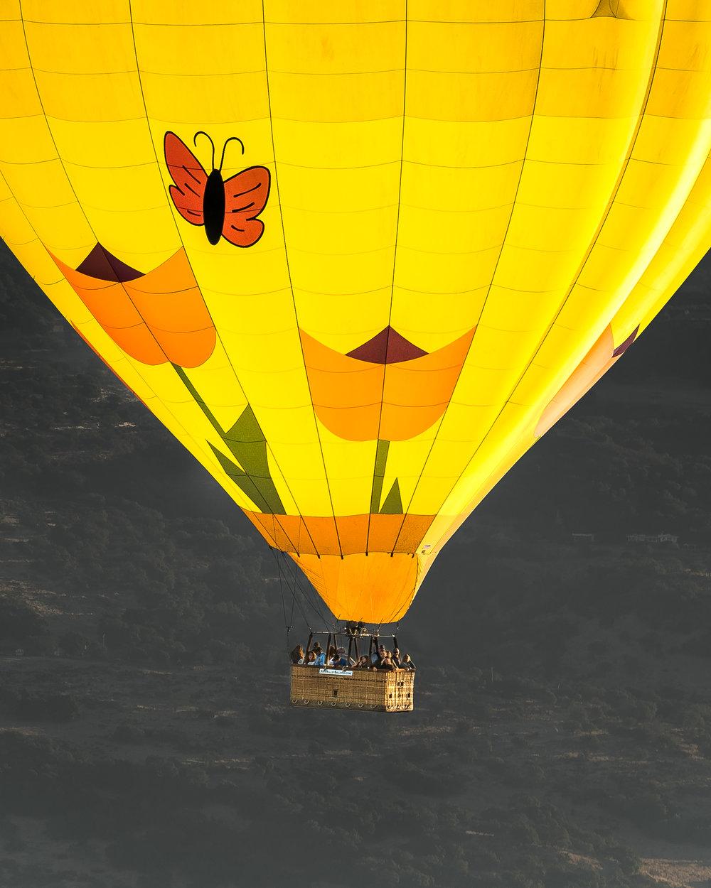NAPA-Baloon-64.jpg
