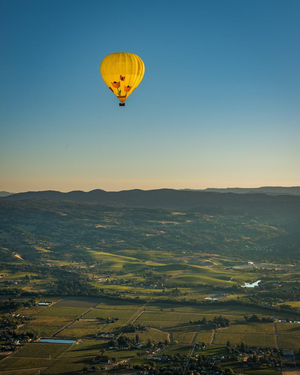 NAPA-Baloon-65.jpg