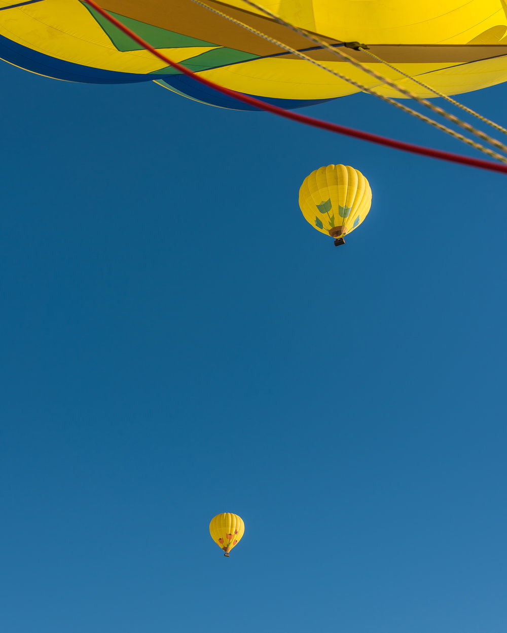 NAPA-Baloon-75.jpg
