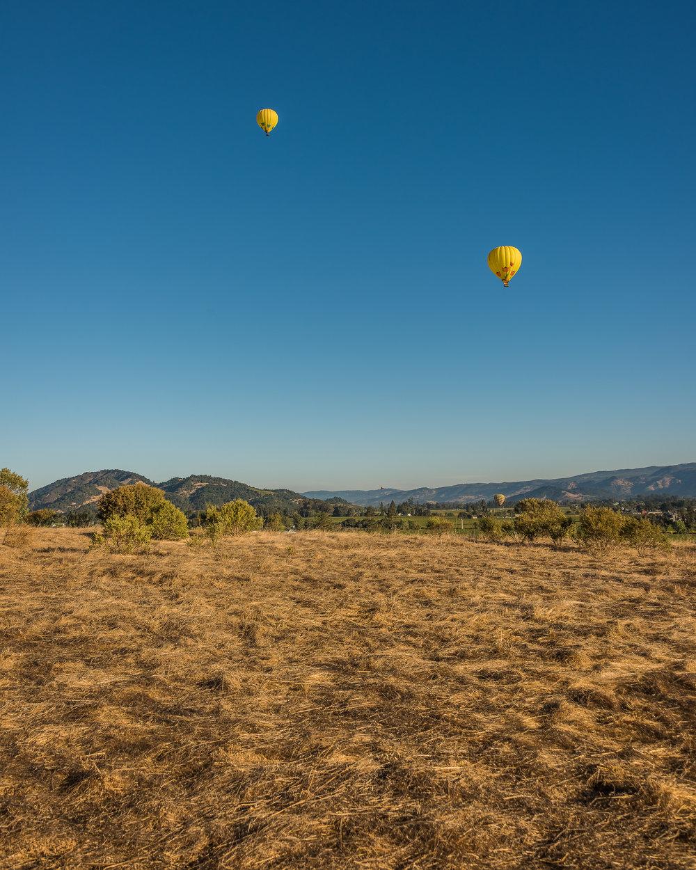NAPA-Baloon-87.jpg