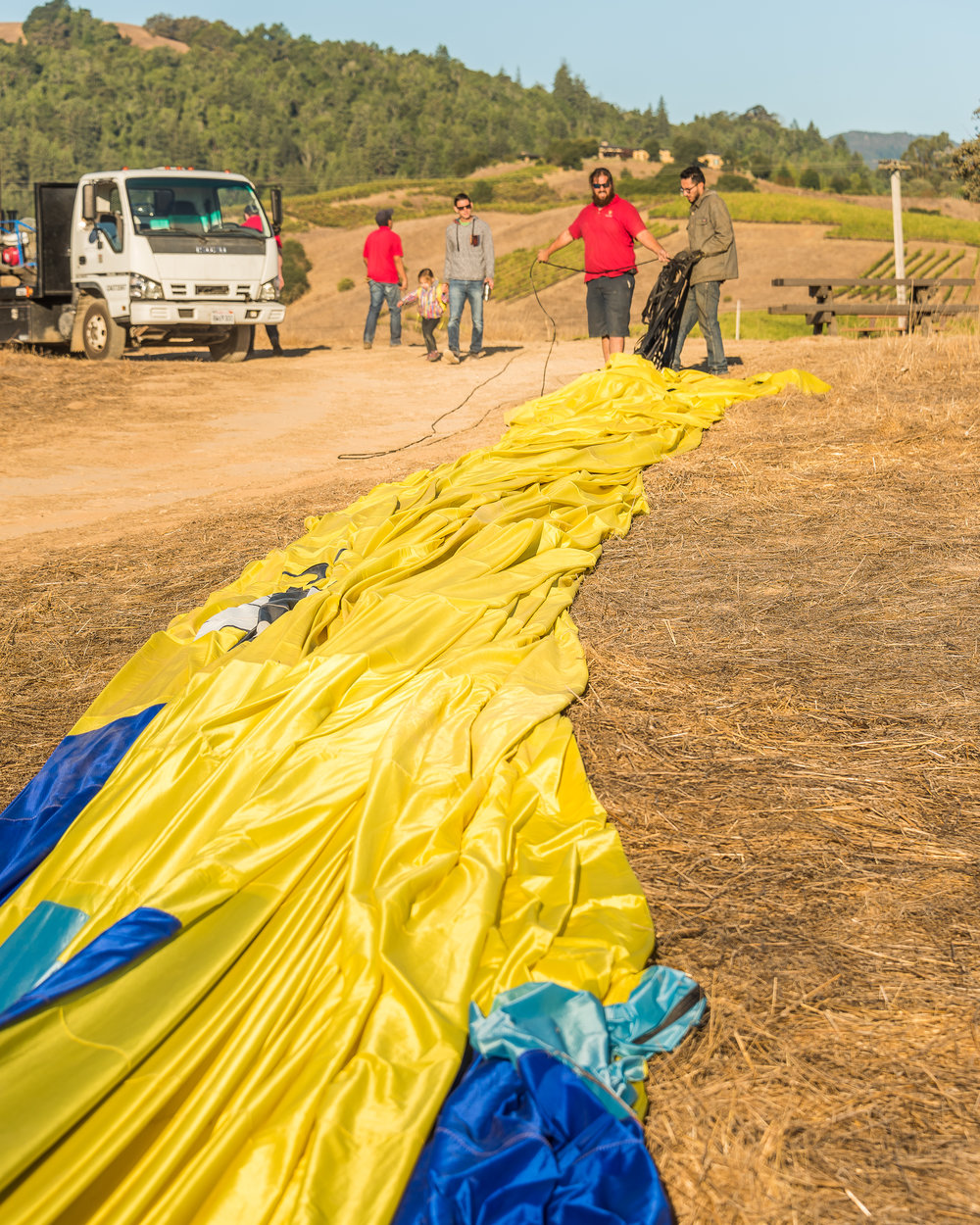 NAPA-Baloon-91.jpg