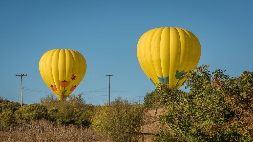 NAPA-Baloon-93.jpg