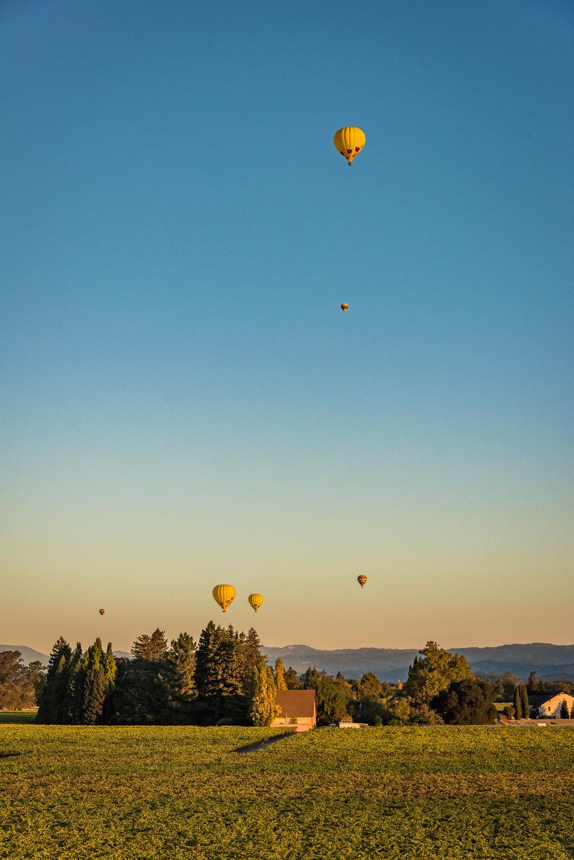 Napa-Balloon-42.jpg