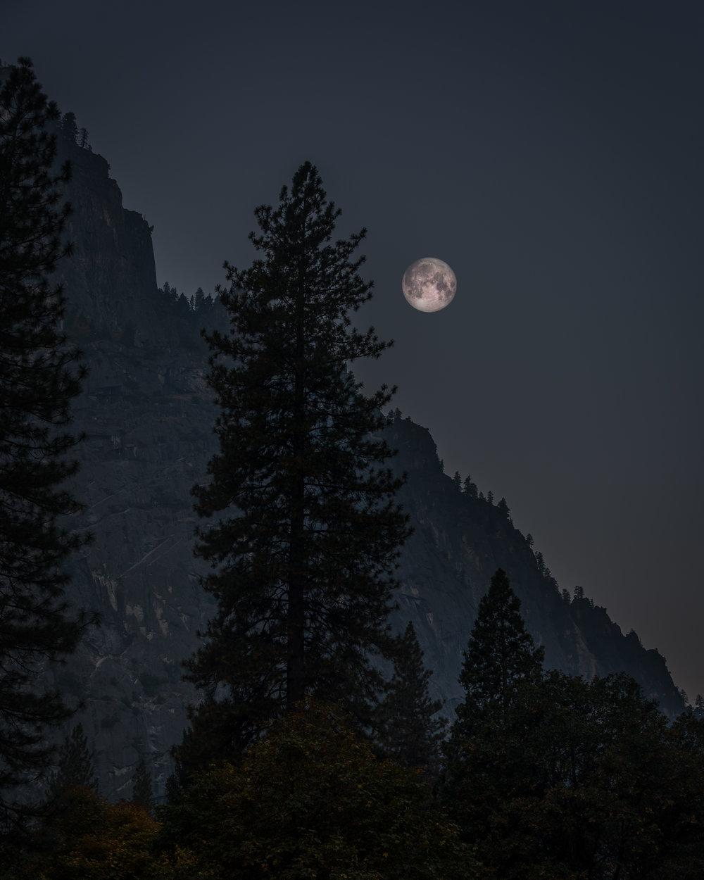 NAPA-Yosemite-26.jpg