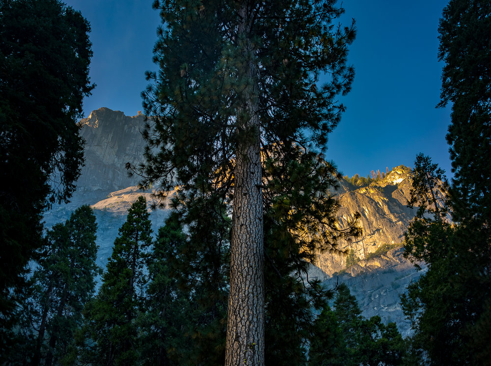 NAPA-Yosemite-31.jpg