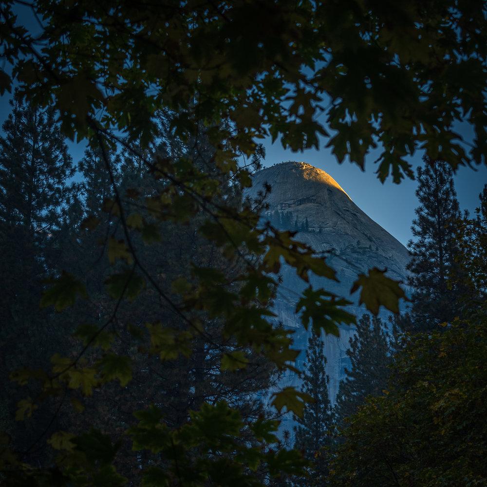 NAPA-Yosemite-34.jpg