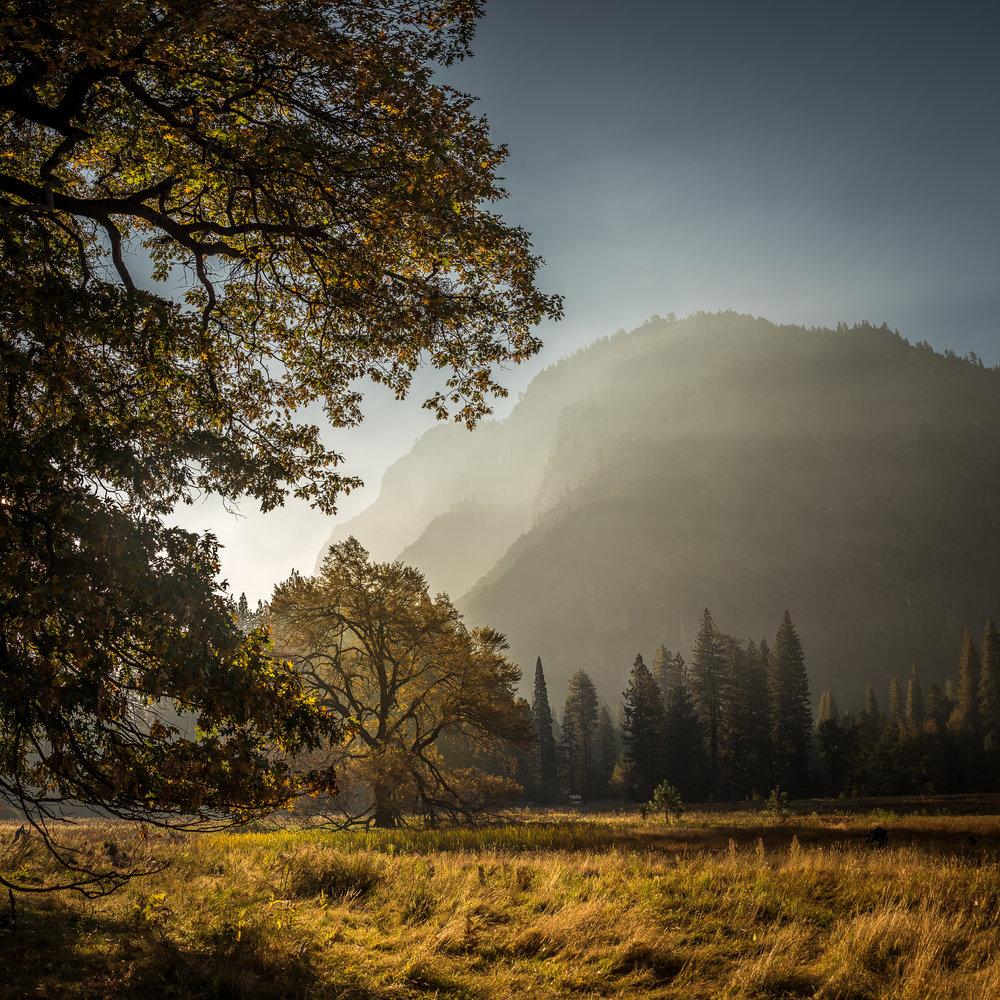 NAPA-Yosemite-44.jpg