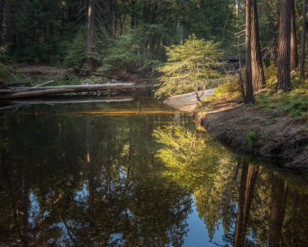 NAPA-Yosemite-48.jpg