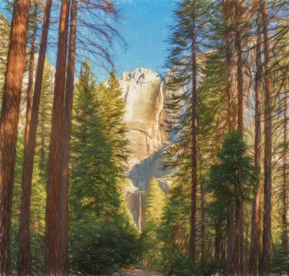NAPA-Yosemite-49.jpg