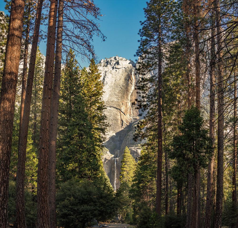 NAPA-Yosemite-50.jpg