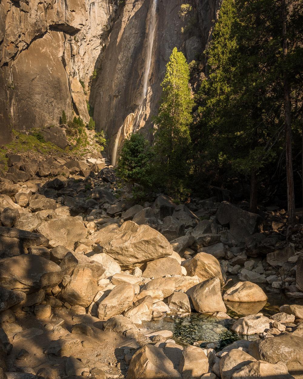 NAPA-Yosemite-55.jpg