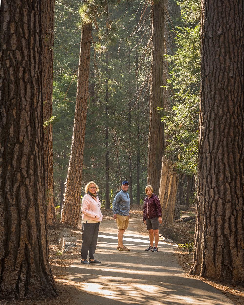 NAPA-Yosemite-64.jpg