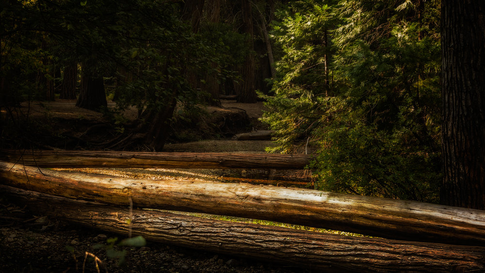 NAPA-Yosemite-66.jpg
