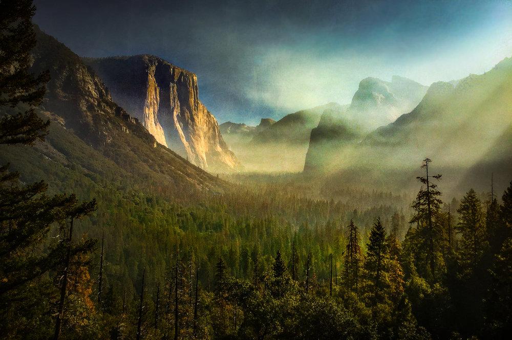 NAPA-Yosemite-69.jpg