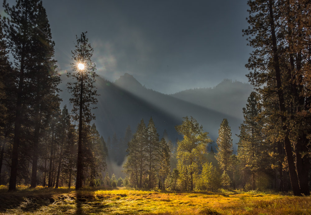 NAPA-Yosemite-73.jpg