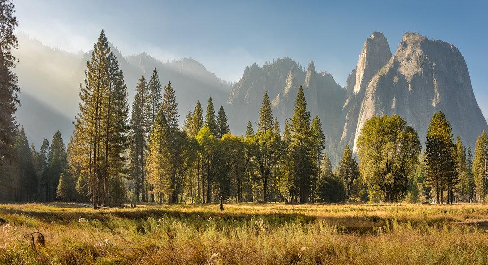 NAPA-Yosemite-72.jpg