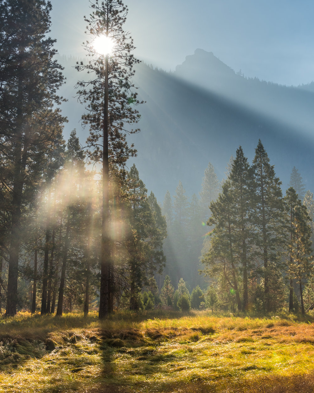 NAPA-Yosemite-74.jpg