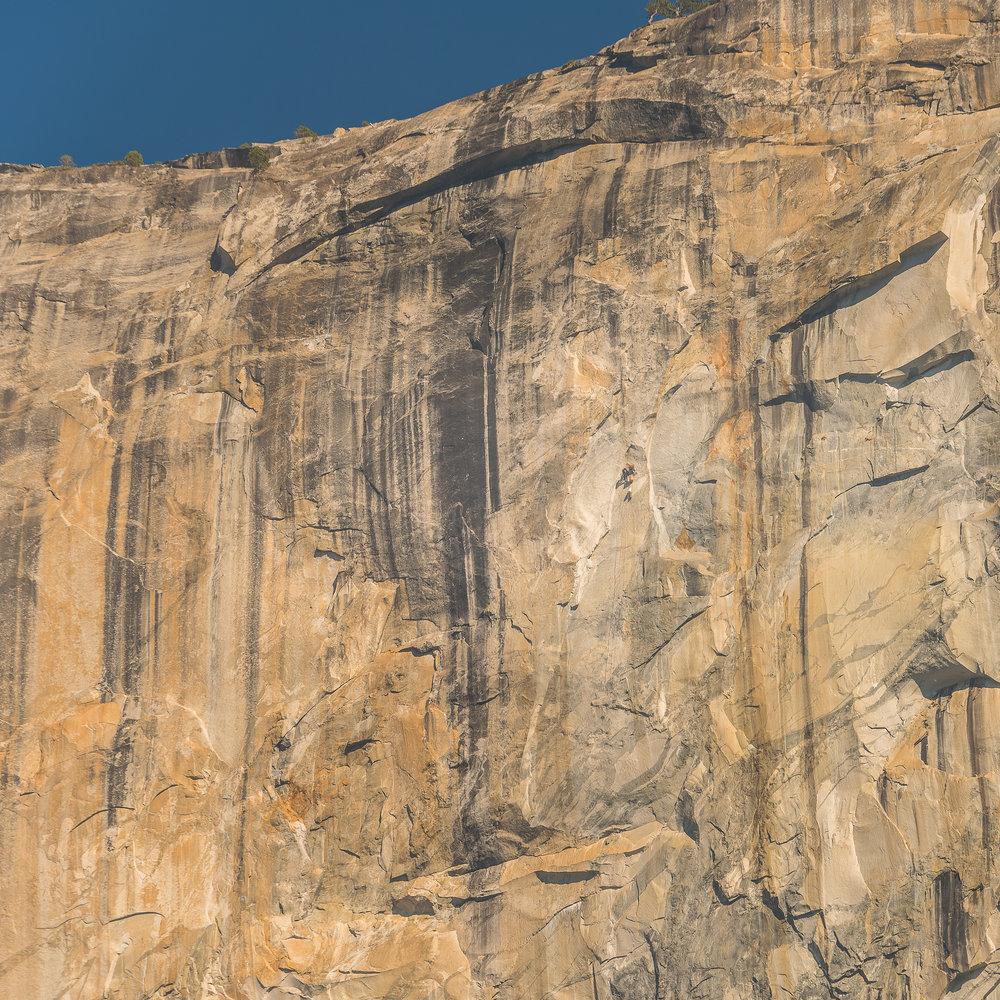 NAPA-Yosemite-78.jpg