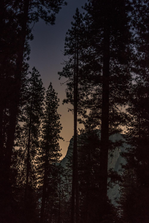 Napa-Yosemite-25.jpg